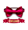 gentleman label design elegant style red vector image
