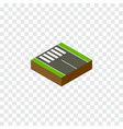 isolated pedestrian isometric strip vector image vector image