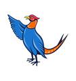 pheasantbird FIN vector image vector image
