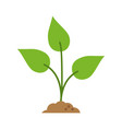 plant icon image vector image vector image