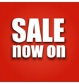 Sale now on poster with bag vector image vector image