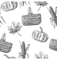 Seamless pattern with leaves pumpkin basket vector image