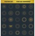 set vintage sunburst vector image