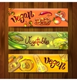 sketch different vegetables vector image