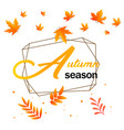 autumn season maple autumn leaves geometry backgro vector image vector image