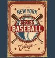 baseball ball and clubs vector image