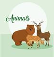 cute animals card cartoon vector image vector image