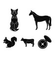 horse cow cat squirrel and other kinds of vector image vector image