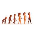 human evolution from monkey to modern sexy woman vector image vector image