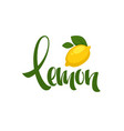 lemon lettering composition for your citrus juice vector image vector image