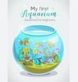 my first aquarium aquaristic for beginners vector image