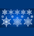 set snowflakes vector image