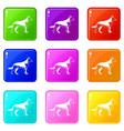 shepherd dog set 9 vector image