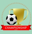 Soccer football medal cup vector image vector image