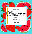 summer sale and cute watermelon slice vector image