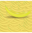Banana background vector image