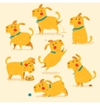 Cartoon Dog poses Isolaed vector image vector image