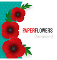 flowers background with full blooming red poppies vector image vector image