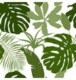 seamless pattern green tropical leaves vector image vector image