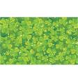 spring clover vector image vector image