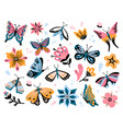 spring flowers and butterflies colorful garden vector image