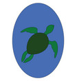 turtle hand drawn design on white background vector image vector image