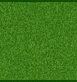 green grass seampess texture - summer background vector image