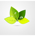 Abstract Green 3d Leaves Isolated on Grey vector image vector image
