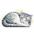 cat wall sticker vector image