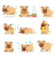 cute funny pug dog activities during day set pug vector image
