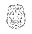 head lion vector image vector image