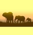 horizontal of wild animals in sunset savanna vector image