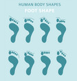 human body shapesfeet types icon set vector image