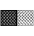 leather upholstery white black vector image vector image