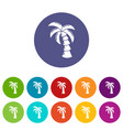 palm icons set color vector image vector image