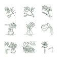 Floristic Icons vector image