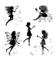 Forest Fairy set vector image
