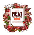 fresh meat product sketch poster for food design vector image vector image