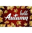 Hello Autumn Goodbye Summer The trend vector image vector image