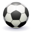 soccer ball for playing football on white vector image