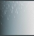 stock rain rainfall isolated vector image