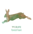 Wildlife banner - forest animals - hare vector image vector image