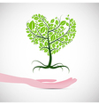 Heart Shaped Abstract Green Tree in Human Hand vector image vector image