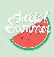 hello summer poster lettering with conceptual vector image