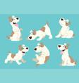 jack russel terrier dog cartoon set vector image vector image
