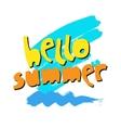 Phrase Hello Summer Typography artTypography vector image