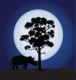 rhino on a moonlight vector image