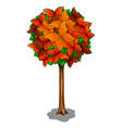 autumn tree and butterflies as leaves vector image