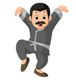 funny kung fu cartoon vector image vector image