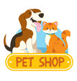 petshop design with cat and dog vector image vector image